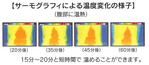 サーモグラフィによる温度変化の様子