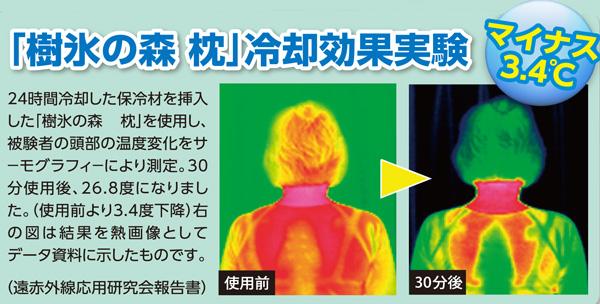 冷却効果実験